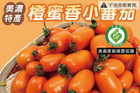 只要399元起,即可享有高雄美濃橙蜜香小蕃茄〈一箱/二箱/三箱/四箱/六箱〉