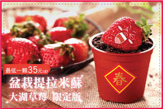 最低一顆只要35元~夠麻吉員工搶翻天,【木匠手作】盆栽提拉米蘇-大湖草莓限定版,口感層次超豐富,香濃甜蜜好滿足~等不及上檔,咱們已團購100顆回家吃了!
