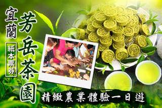 每張只要225元,即可享有【宜蘭-芳岳茶園】單人精緻農業體驗一日遊票券〈含茶品DIY一份 + 農特產品(兩人一份)〉