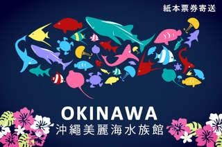 只要479元,即可享有【日本-沖繩美麗海水族館一日(實體票)】成人門票一張(18歲以上)