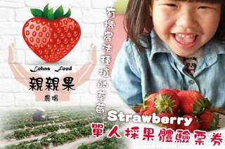 每張只要225元,即可享有【新竹-親親果農場】單人採果體驗票券〈含採果體驗(二選一:豐香1號草莓/西瓜) + 採果前導覽解說 + 伴手禮(水果或水果加工品)〉(二張/三張)