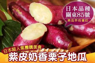 【賀鮮生-日本團購美食-大份量紫皮奶香栗子地瓜】日本品種的地瓜養身又健康!多了栗子的香氣,美妙滋味讓人愛不釋手!