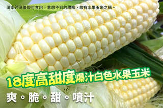 每份只要290元起,即可享有18度高甜度爆汁白色水果玉米〈一份/二份/三份/五份/十份〉