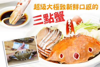 每隻只要188元起,即可享有超級大極致新鮮口感的三點蟹〈1隻/5隻/8隻/16隻/30隻〉