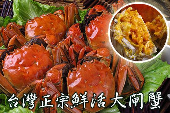 每隻只要88元起,即可享有台灣正宗鮮活大閘蟹(3兩)〈4隻/8隻/12隻/20隻/30隻/40隻〉