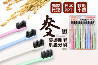每支只要7元起,即可享有獨家代理日本PPT百年薔薇歐風小麥軟毛小頭牙刷〈10支/20支/40支/80支/160支/320支/500支/1000支,顏色隨機出貨〉
