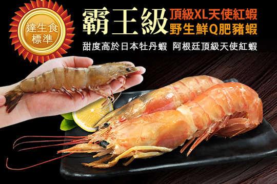 每種只要399元起,即可享有頂級XL巨無霸天使紅蝦/野生鮮Q肥豬蝦〈任選2種/3種/6種/9種/12種/15種〉