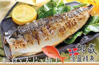 破萬團購再一發!【挪威薄鹽鯖魚】深夜食堂香濃一夜干,魚肉細緻少刺,流出肥美魚油~