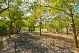 大片的綠蔭廊道,有如世外桃源般的自然假期就在【台南-欖仁宿】!簡潔樸實,讓您盡享清幽舒適!貼心規劃多項休閒區域,豐富您的美好旅行!