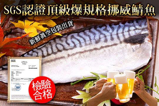 每片只要54元起,即可享有SGS認證頂級爆規格挪威鯖魚〈6片/12片/28片/45片/60片/80片〉