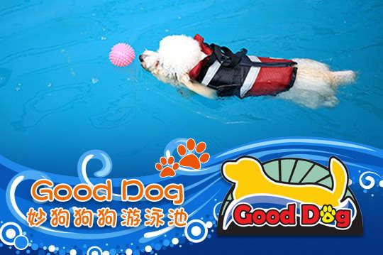 只要249元起,即可享有【GOOD DOG妙狗(寵物游泳池)】A.15KG以下狗寶貝門票一張 / B.15KG以上狗寶貝門票一張〈含一大一小戶外泳池戲水區、淋浴間、狗狗救生衣、免費停車場、可攜帶外食〉