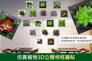 每入只要155元起,即可享有仿真植物3D立體相框牆貼〈任選二入/四入/六入/九入,款式可選:001~009款〉CD方案另加贈3D蝴蝶創意壁飾貼一組(4款款式隨機出貨)