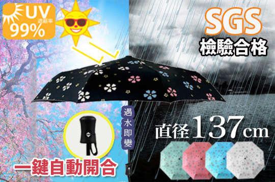 只要485元起,即可享有24吋/27吋自動開合碳纖維抗UV變色晴雨傘〈一入/二入/四入/八入,顏色可選:時尚黑/蘋果綠/櫻花粉/象牙白/天空藍〉