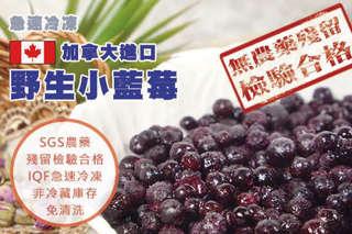 每包只要380元起,即可享有【幸美生技】加拿大進口鮮凍野生藍莓〈一包/二包/四包/七包/十包〉