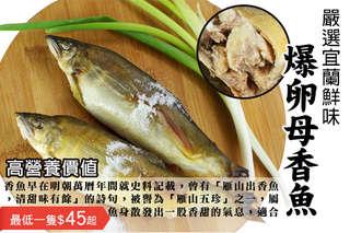 每隻只要45元起,即可享有嚴選宜蘭鮮味爆卵母香魚〈8隻/12隻/20隻/32隻/40隻/60隻/80隻/100隻/120隻〉