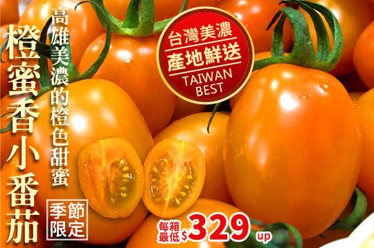 每箱只要329元起,即可享有美濃超人氣橙蜜香小番茄3斤超足重〈一箱/二箱/三箱/四箱/六箱/九箱〉