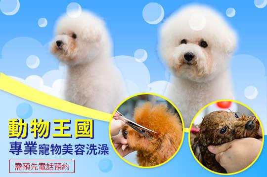 只要250元起,即可享有【動物王國】寵物美容洗澡服務 A.小型犬方案(2KG~6KG) / B.中型犬方案(7KG~12KG) / C.大型犬方案(13KG~40KG) 三選一〈含全身洗澡 + 腳底毛修飾 + 肚皮毛修飾 + 肛門毛修飾 + 肛門腺清潔 + 耳毛修飾清潔 + 指甲修剪(磨指甲) + 眼週毛髮修剪〉皆加贈美容洗澡折價券200元一張(限下次使用) + 冬季商品折價券100元一張(可當次使用) + 動物王國官網購物折價券100元一張(滿888元可折抵100元),請務必提前電話預約