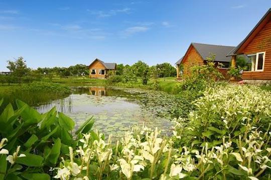 宽广的草坪,儿童游戏的滑梯,菜园,还有都会地区难得一见的生态池,彷佛