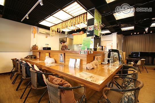 只要289元,即可享有【雅风音乐猫咪咖啡厅】猫咪中途之家-给我一个家